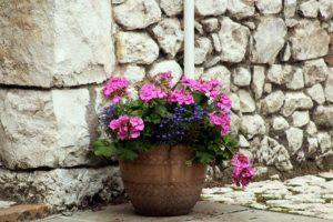 donica kwiatowa